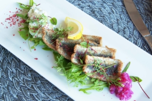 Baltic herring fillets